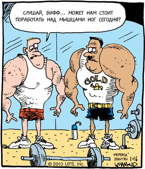 Советы для начинающих «качков»: первые тренировки в спортзале